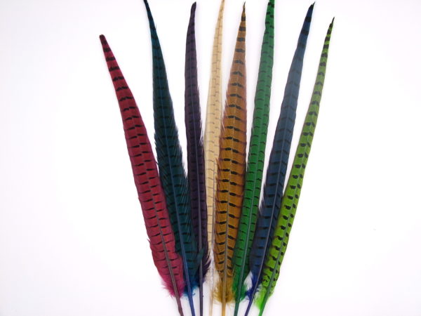 Ringneck Pheasant Centre Tail Centre Feather Dyed